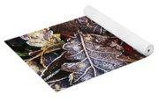 Frozen Oak Leaves, Glenveagh National Yoga Mat