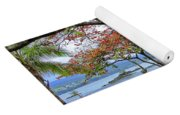 Gnarly Trees Of South Hilo Bay - Hawaii Yoga Mat