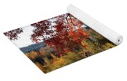 Gonzaga With Autumn Tree Canopy Yoga Mat