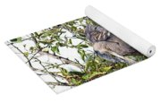 Great Blue Heron In A Tree Yoga Mat