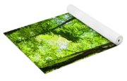 Green Light Harmony - Walking Through The Summer Forest Yoga Mat
