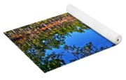 Green Swamp In December Yoga Mat