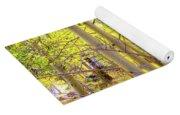 Grove Of Aspens On An Autumn Day Yoga Mat