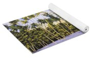 Hawaii Postcard Yoga Mat