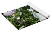Hollyhock At Sunrise Yoga Mat