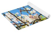 House Finch In The Cherry Blossoms Yoga Mat