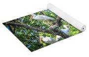 Ibises In A Tree Yoga Mat