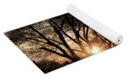 Illuminating Through Trees  Yoga Mat