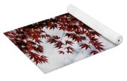 Japanese Maple Red Lace - Horizontal View Downwards Right Yoga Mat