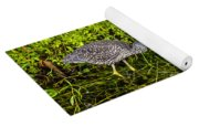 Juvenile Night Heron Yoga Mat