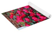Knockout Red Rosebush Yoga Mat