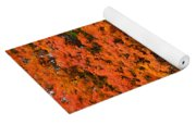 Landscape View Of Mobile Home 1 Yoga Mat