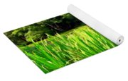 Lily Pond #4 Yoga Mat