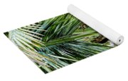 Lovely Bunch Of Coconuts Yoga Mat