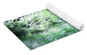 Magical Forest At Blarney Castle Ireland Yoga Mat