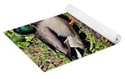 Mallard And Reflection Yoga Mat
