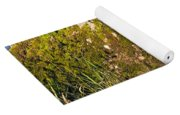 Moss Covered Rock And Ripples On The Water Yoga Mat