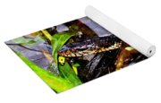 Northern Water Snake Yoga Mat