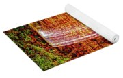 Painted Tews Falls					 Yoga Mat