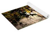 Passing Buck In Autumn Field Yoga Mat