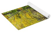 Path In The Woods During Fall Leaf Season Yoga Mat