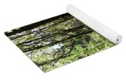 Pathway Through The Woods Yoga Mat