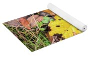 Paw Paw Leaf Fall Colors Yoga Mat