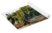 Pictured Rock 6323  Yoga Mat