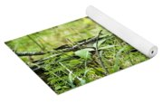 Pileated Woodpecker On The Ground No. 1 Yoga Mat