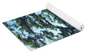 Pine Over The Bay Yoga Mat