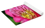 Purple Peruvian Lily Yoga Mat