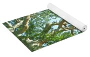 Rainforest Canopy Yoga Mat