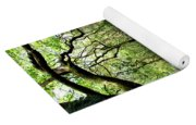 Rainforest Stream Yoga Mat