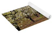 Red Barn Avenue Yoga Mat