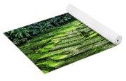 Rice Paddies Yoga Mat