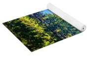 Road Through The Forest Yoga Mat