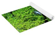 Sapes In Nature Yoga Mat