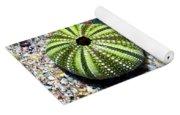 Seashore Colors Yoga Mat