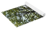 Sideling Hill Lookout  Yoga Mat
