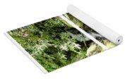 Small Waterfall Smoky Mountains Triptych Yoga Mat