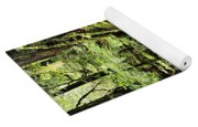 Snoqualmie National Forest Yoga Mat
