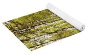 Spring Birches Woods Footpath Yoga Mat
