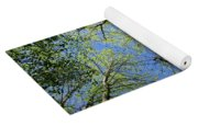 Spring Canopy Skylight Yoga Mat