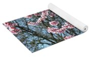 Springtime Seasonal Pink Blossom Flowers Baslee Yoga Mat