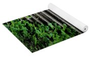 Steps With Ivy Yoga Mat