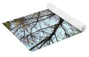 Street With Forsythia Yoga Mat