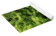 Summer Tree Yoga Mat