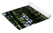 Sun Through Trees In Forest Yoga Mat