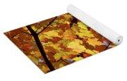 Sunlight In Maple Tree Yoga Mat