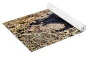 The Amazing Black-tailed Prairie Dog Yoga Mat